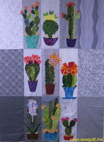 Cactus collage 9 cactus