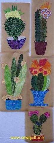 Phyl Cactus blocks